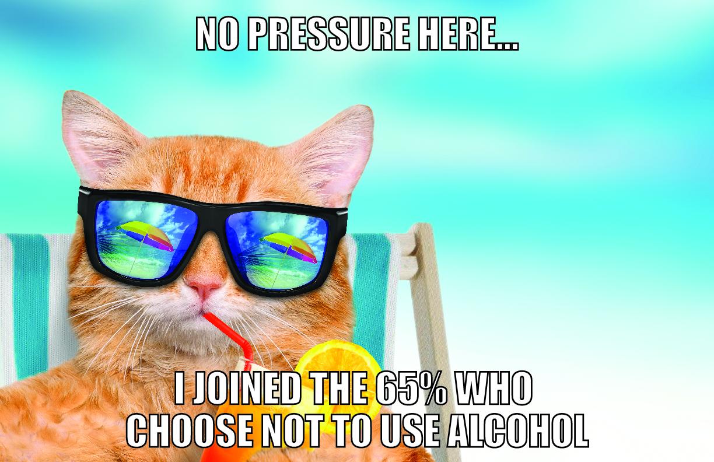 Cat on the beach meme